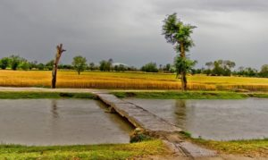 Pakistani Village Pictures: A small canal and a bridge - Photos of Pakistani Villages