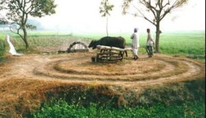 Pakistani Village Life: Two villagers at a well - Photos of Pakistani Villages, Pictures of Pakitani Villages