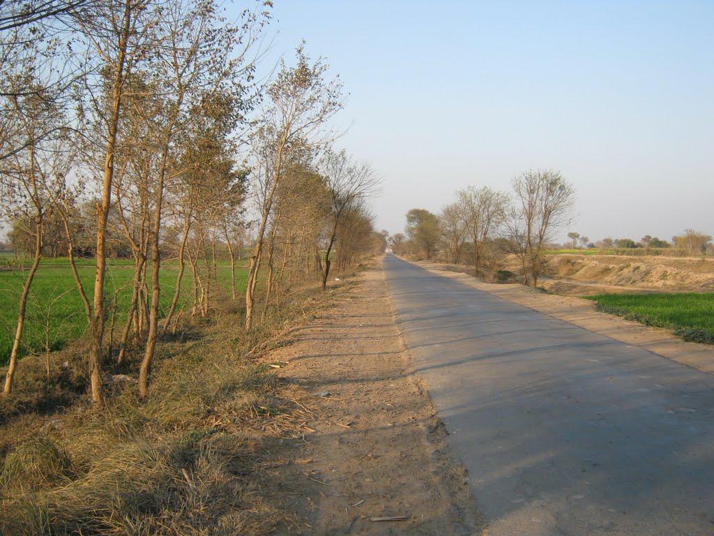 10 Pictures from Mandi Bahauddin Punjab Pakistan
