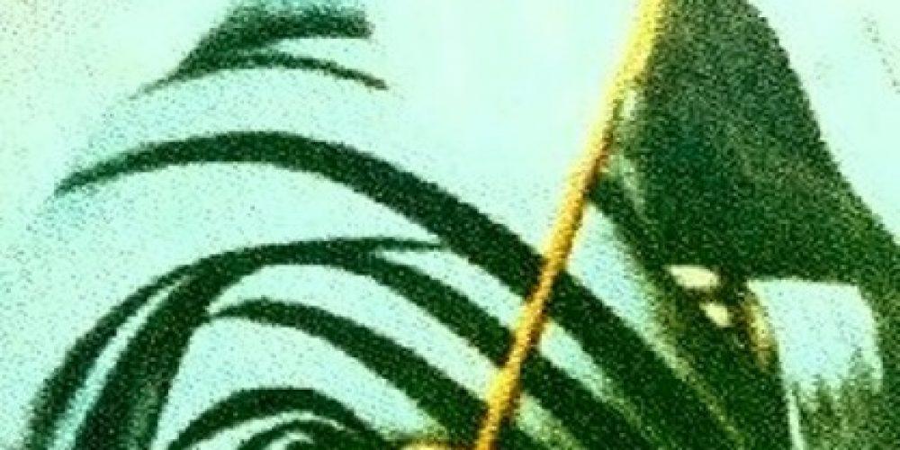 اولیا اللہ اور سر زمین منڈی بہاوالدین ، تحریر، پروفیسر محمد صغیر